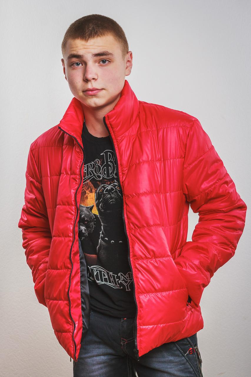 Куртка мужская демисезонная красная
