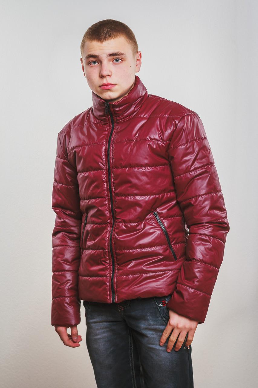 Куртка мужская демисезонная бордо